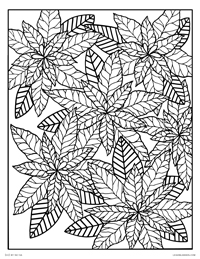 Pointsettia Flowers - Happy Holidays - Free Printable Coloring Page for Adults and Kids, by leiahmjansen.com @oleiah
